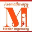 Metier Ingenuity
