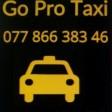 Go Pro Taxi