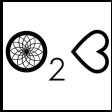 O2C MASSAGE - HAUDECOEUR CLEMENT