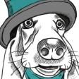 Staceys Dog Grooming
