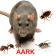 AARK Environmental Services Ltd