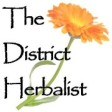 HANNAH SYLVESTER, THE DISTRICT HERBALIST