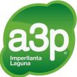 a3p Imperllanta Laguna