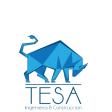 TESA Mantenimiento y Construcción