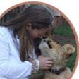 Vox Fauna & Peace Clinic