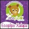 Ecopipo Xalapa