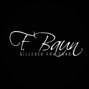 F. Baun