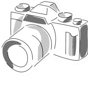 SCHNEIDER-FOTOS