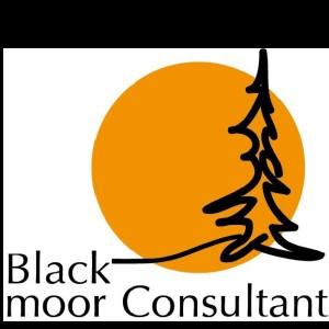 Mellestgården/Blackmoor Consultant