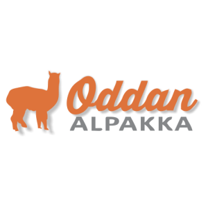 Oddan gård - Oddan alpakka