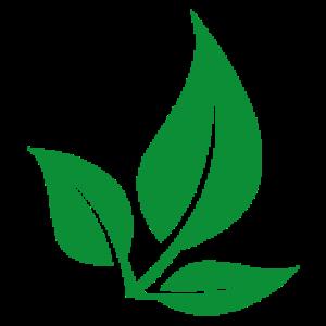 GreenLiving - VeganButiken i Borlänge