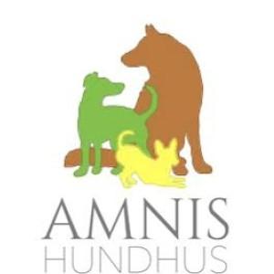 AMNIS HUNDHUS